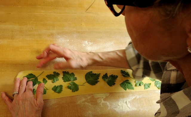 Placing Parsley on Quadrucci